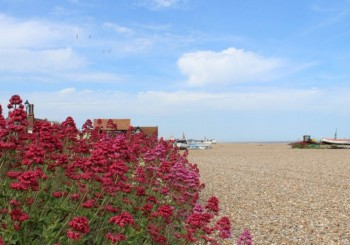 Aldeburgh Shingle Beach