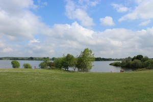 View of Alton Water