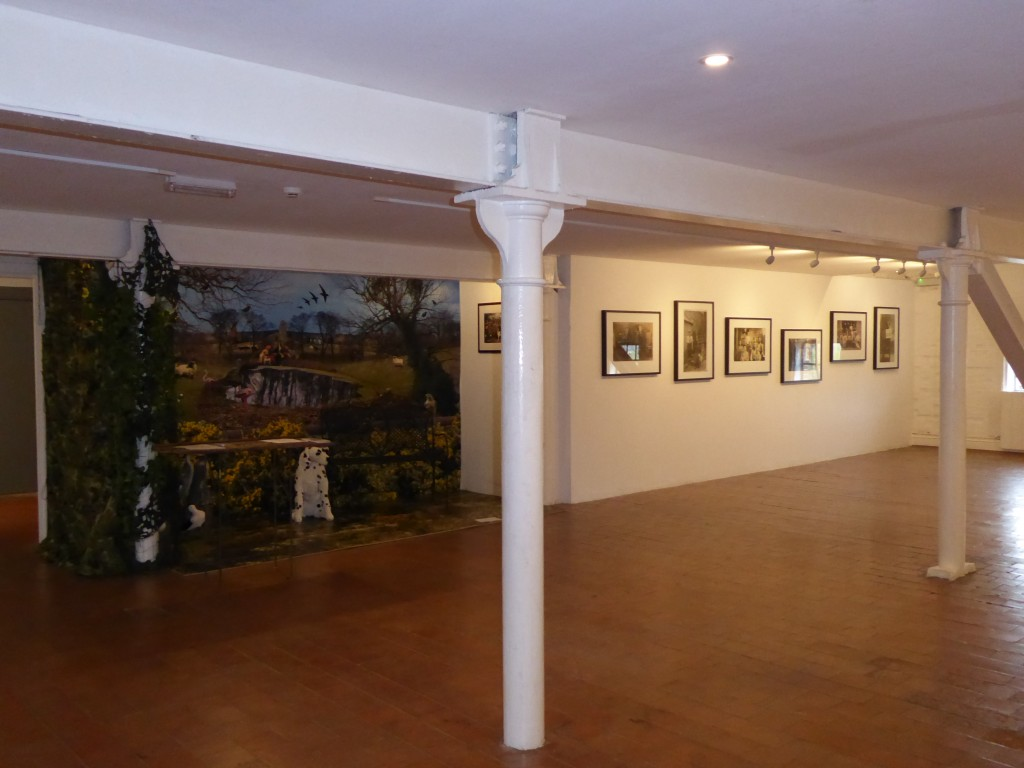 'These are our Dogs' exhibition