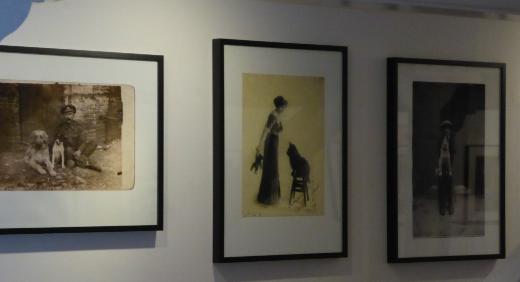 Photo's in the gallery at Photoeast, The Cut Halewsorth