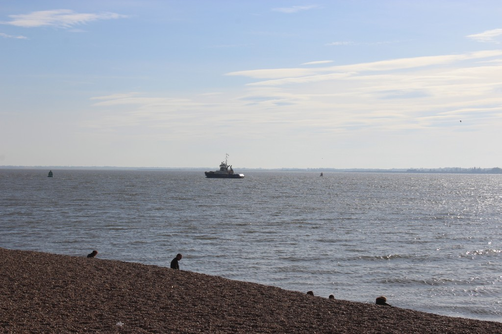 View from landguard Visitor Centre