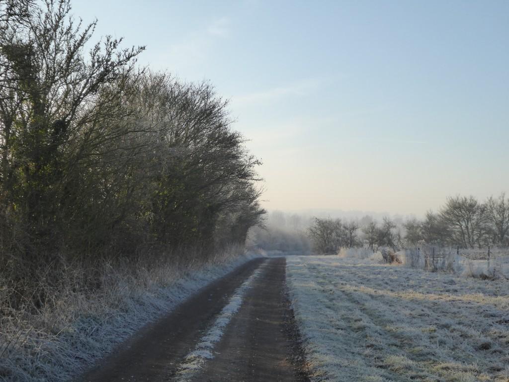 Suffolk footpath