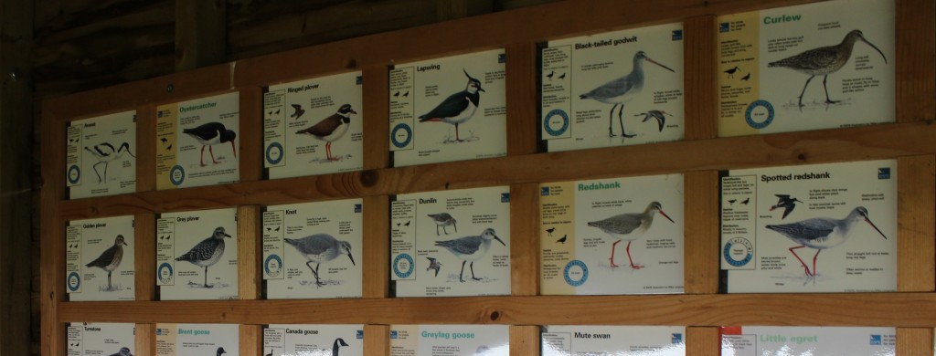 A guide on the wall of the hide showing you what you can expect to see