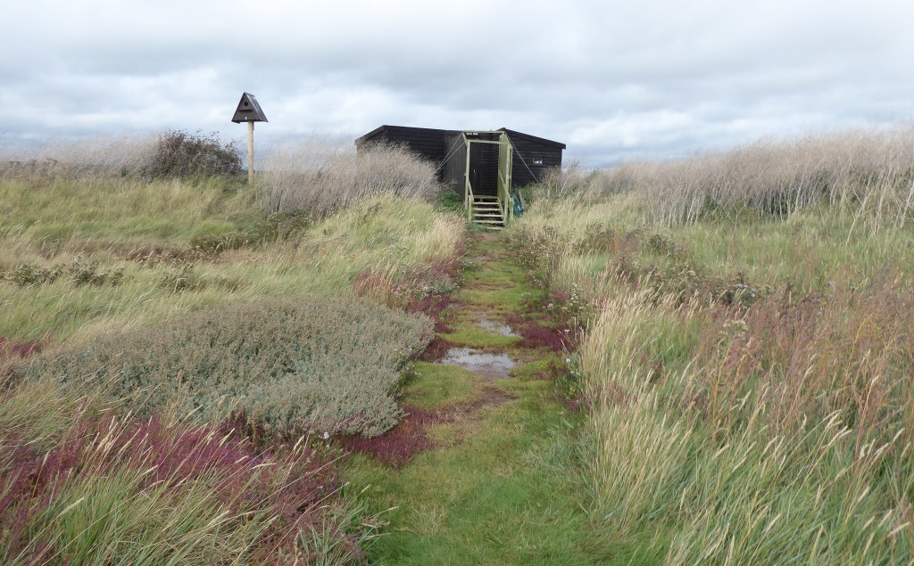 Havergate Island
