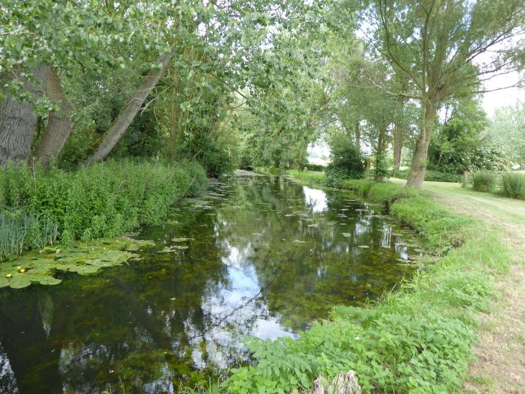 River Deben at Easton Farm Park