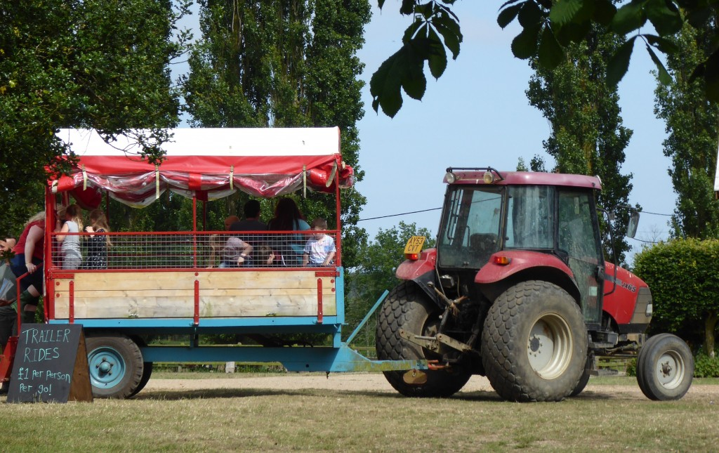 tractor ride at easton farm park