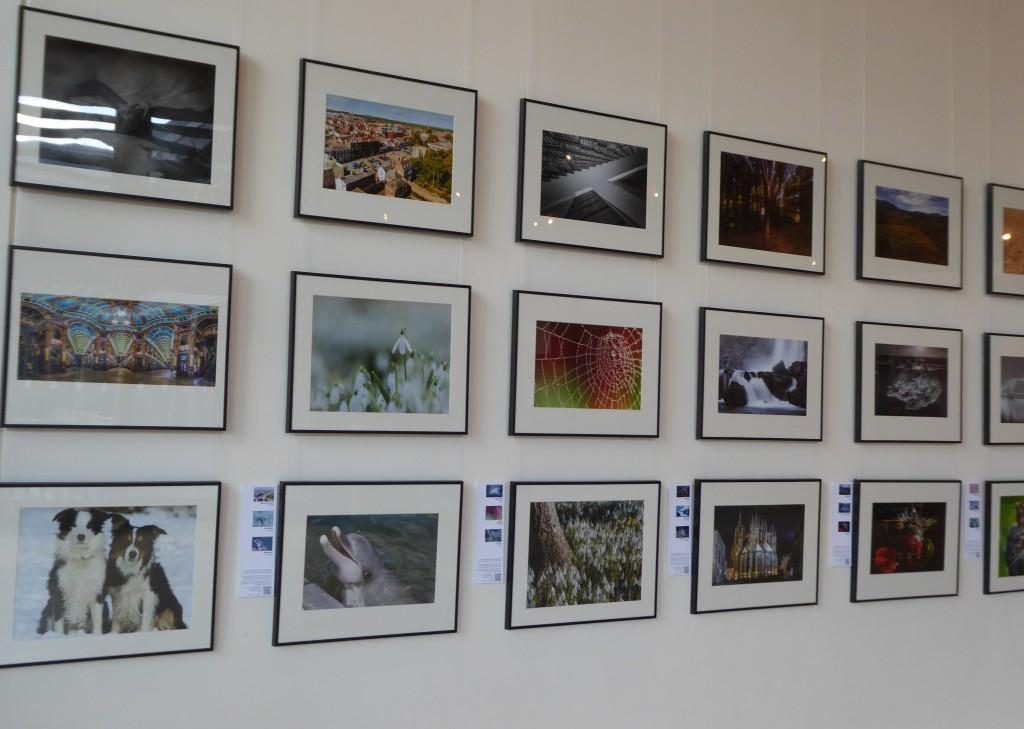 Apex gallery
