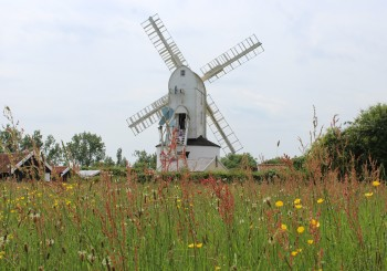 Saxtead grenn post mill