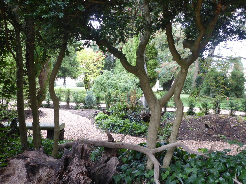 days out Ickworth house stumpery suffolk