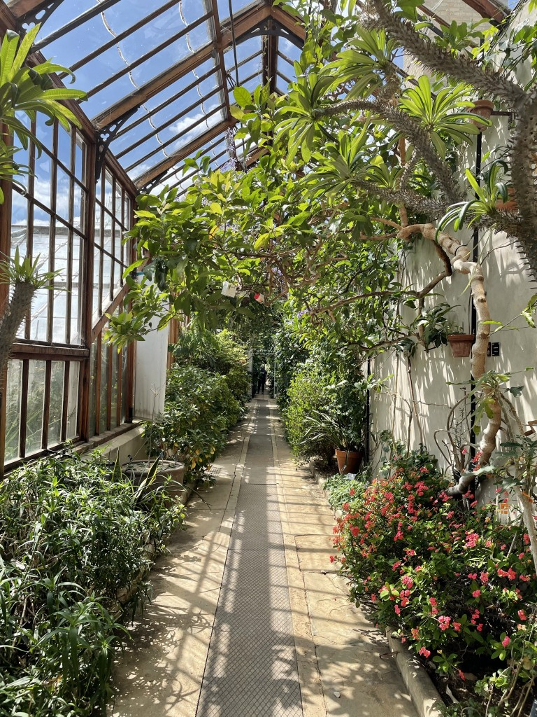 Glasshouse Cambridge University Botanic Garden