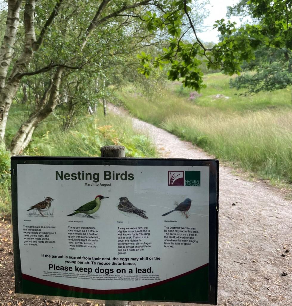 westleton heath nature reserve